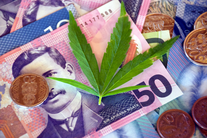 Jayex Healthcare preparing for New Zealand and medical cannabis market debut